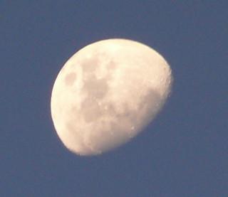 Luna_001